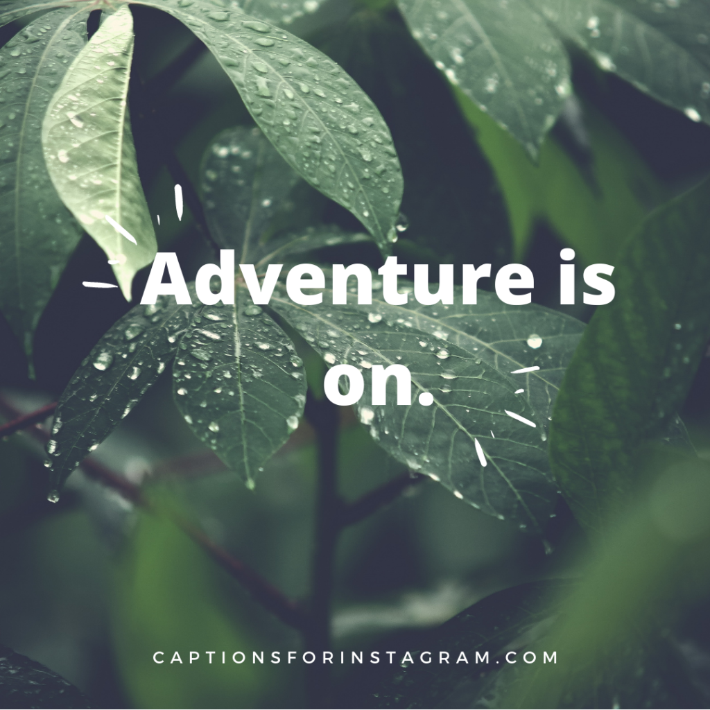 Adventure is on -Best Instagram Caption For Nature Beauty