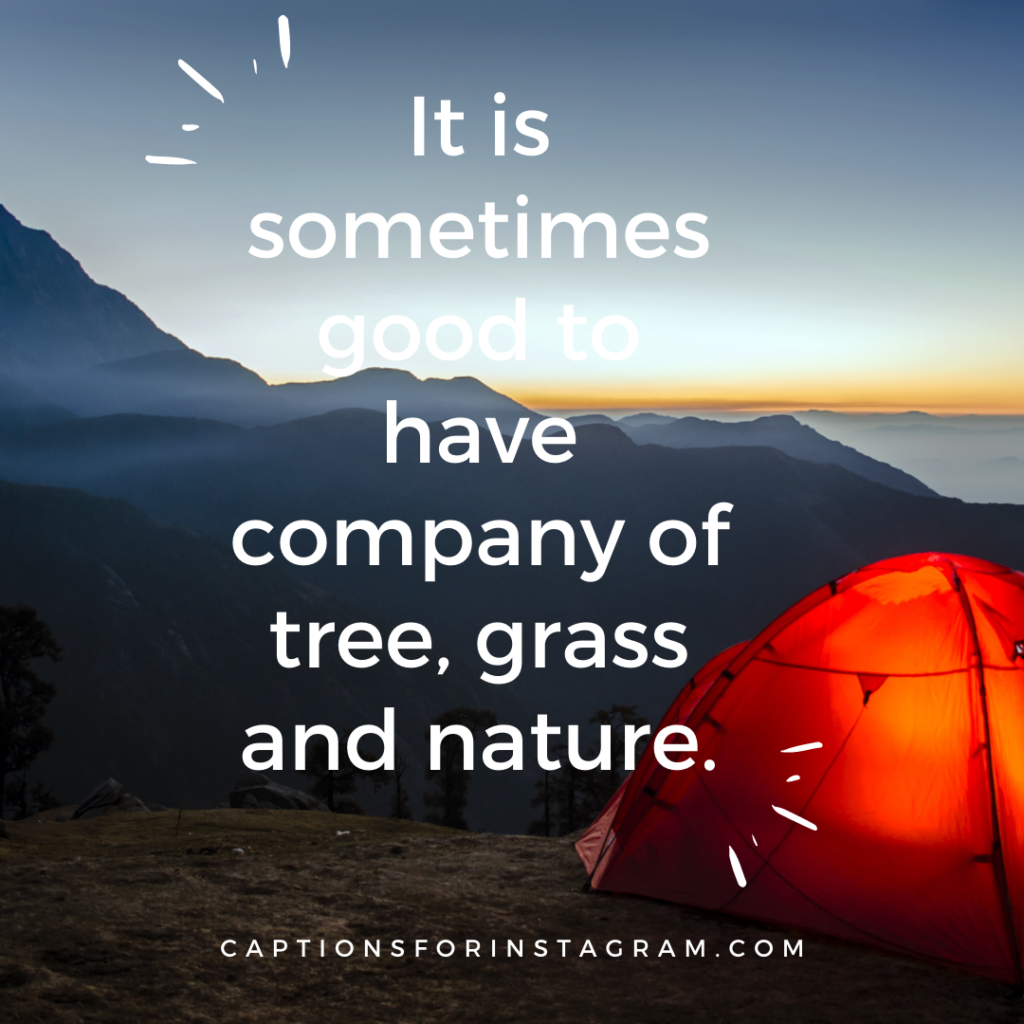 It is sometimes good to have company of tree, grass and nature.