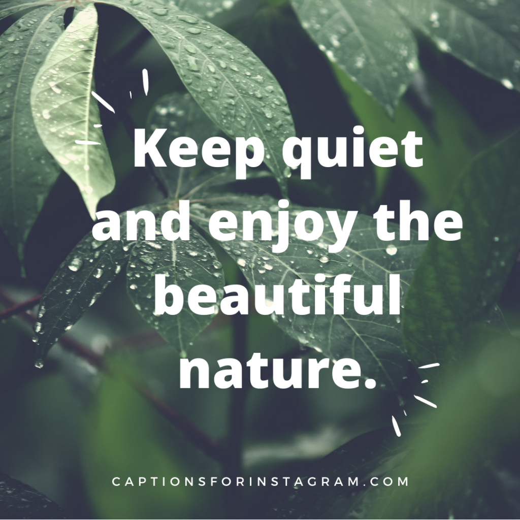 best nature captions for instagram