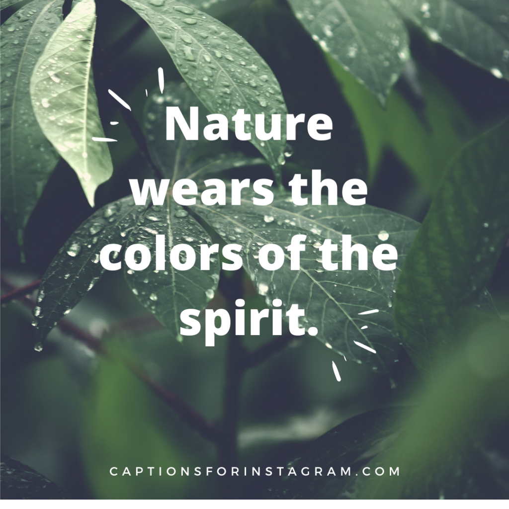 Nature wears the colors of the spirit - Captions For Scenery Pictures from Pinterest.