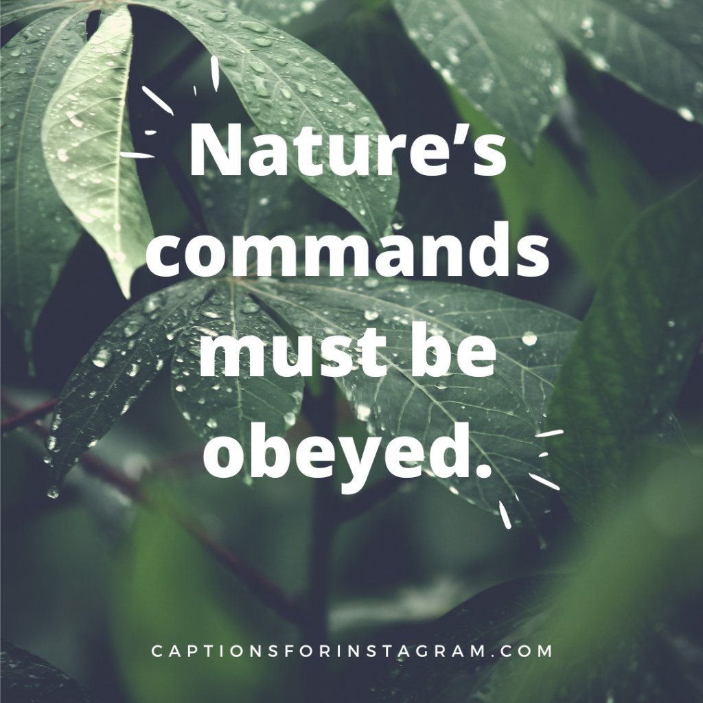 Nature's commands must be obeyed - Nature Quotes For Instagram Photos