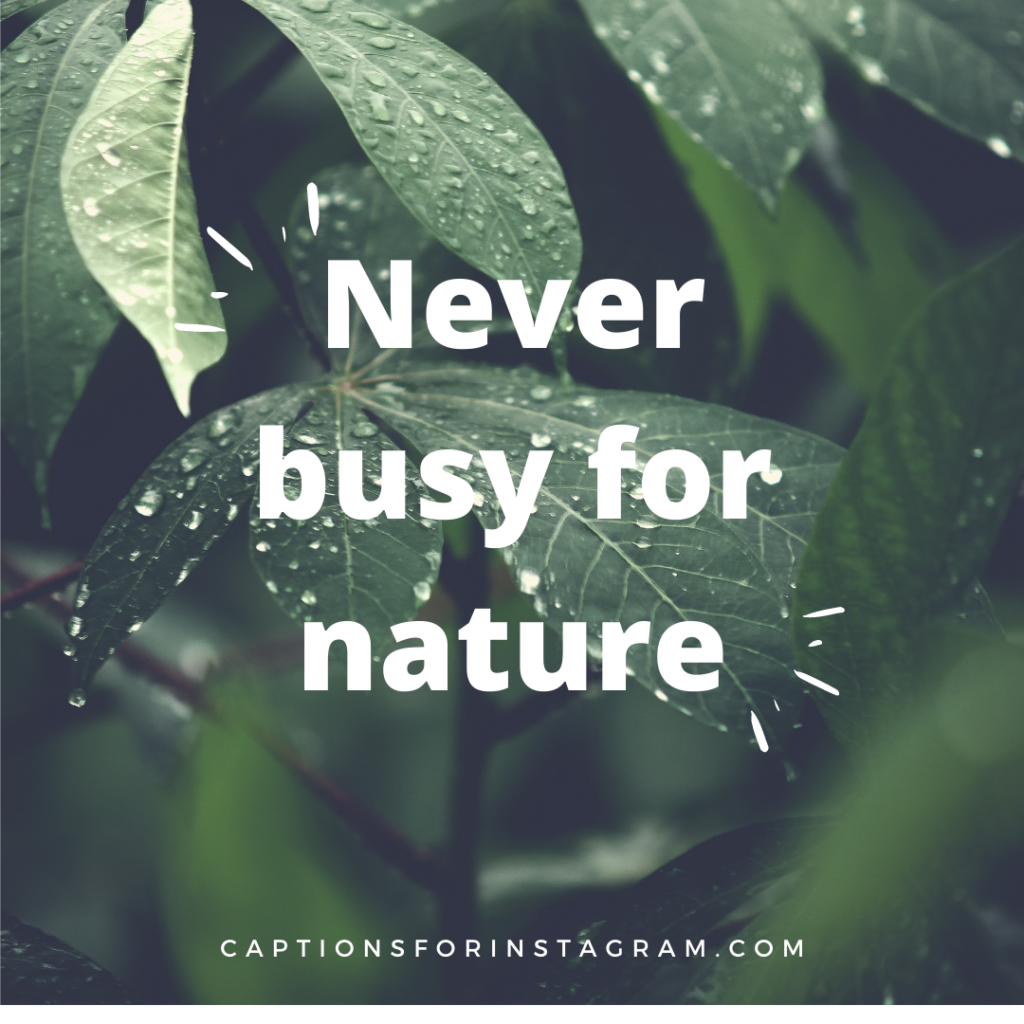 Never busy for nature