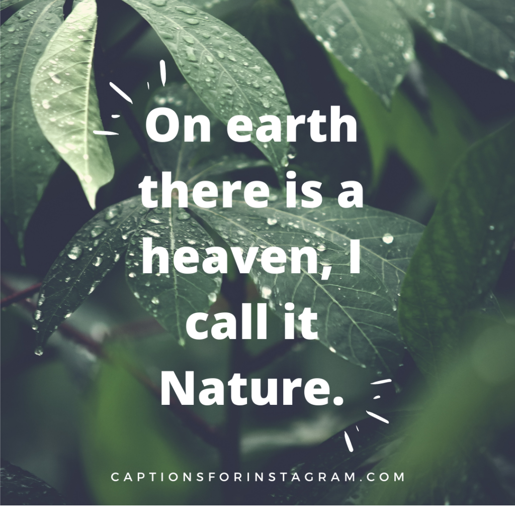 On earth there is a heaven, I call it Nature.