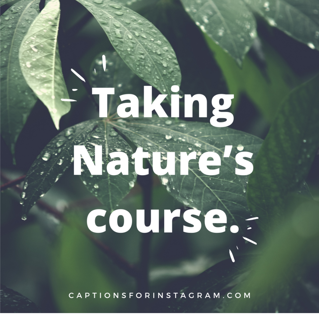 Taking Nature's course.- Funny Nature Captions