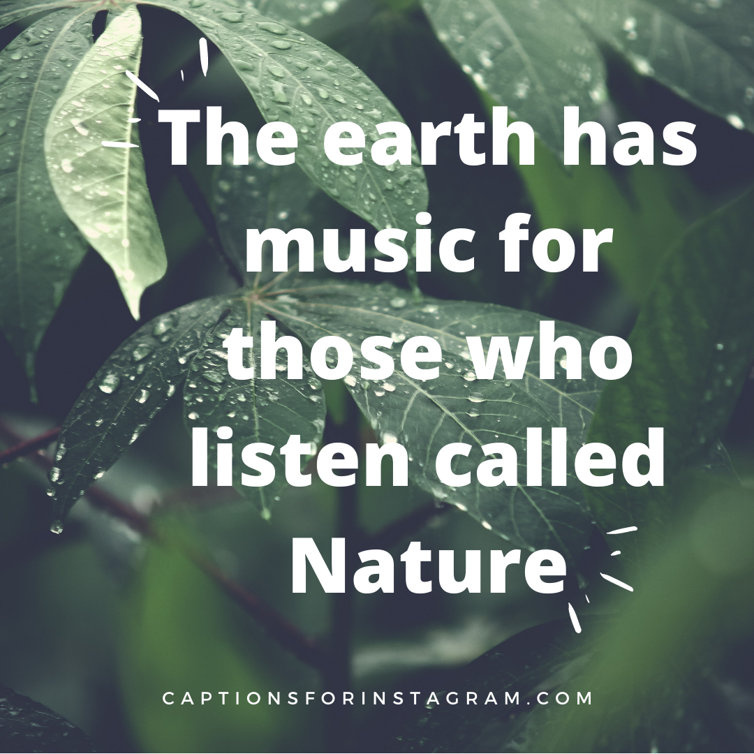 The earth has music for those who listen called Nature - Best Nature Inspiring Captions for Instagram