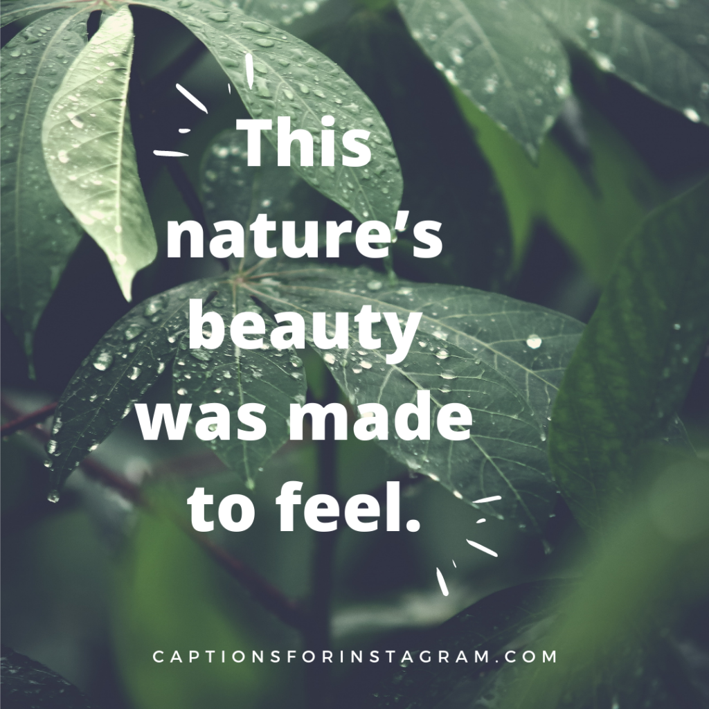 This nature's beauty was made to feel.