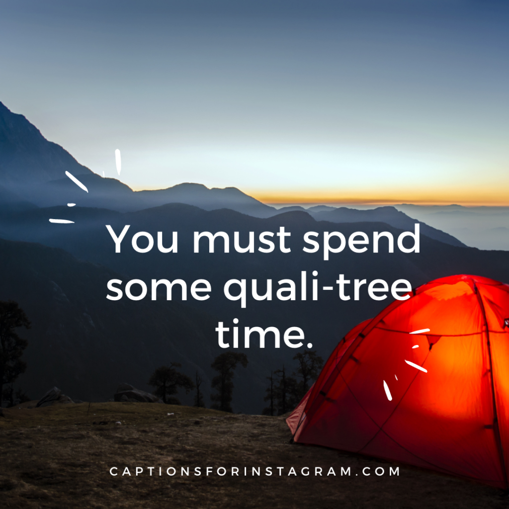 You must spend some quali-tree time.