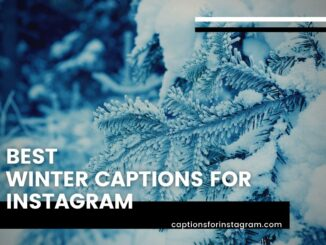 Best Winter Captions for Instagram