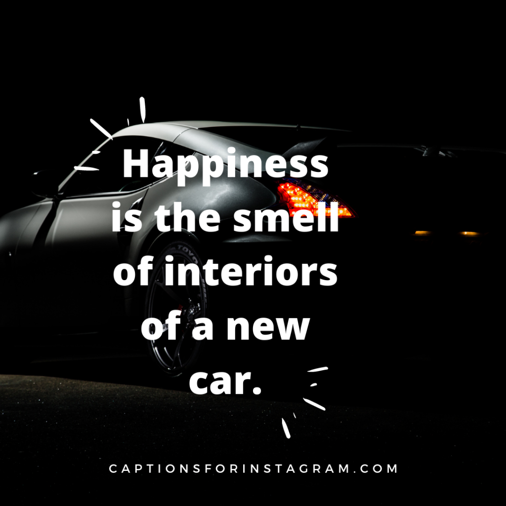 Happiness is the smell of interiors of a new car.