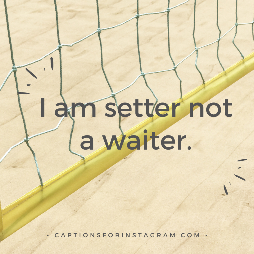 I am setter not a waiter.
