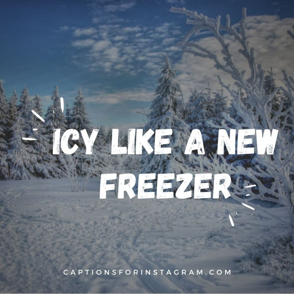 best winter captions