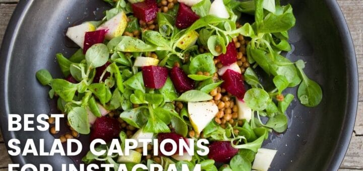 Best salad captions for instagram